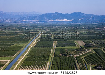 View of a vineyard in Dalmatia, Croatia.