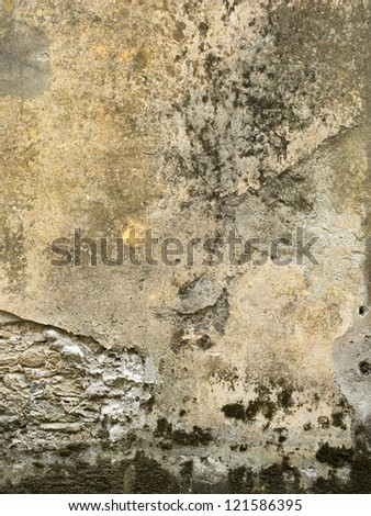 View of a weathered concrete wall in a close-up image.