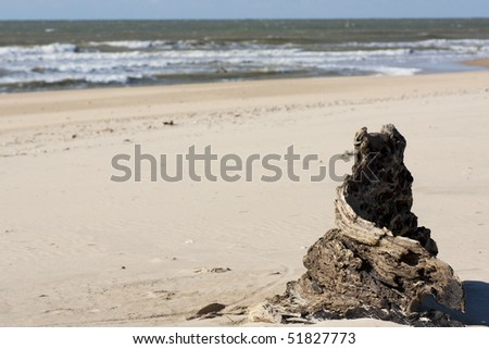 View of an abandoned tree stump on the beach. - stock photo
