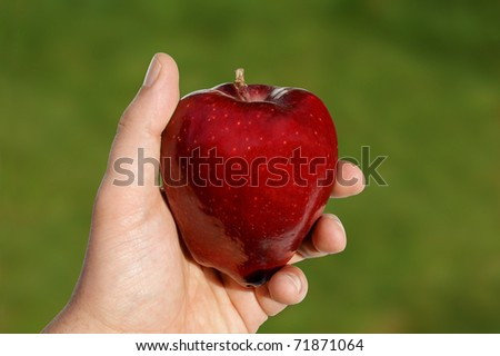 View of an apple in hand against green background. Includes path for easy clipping. - stock photo