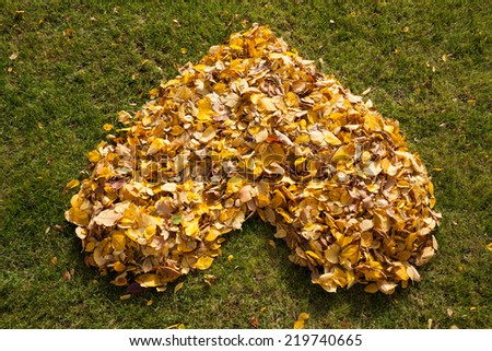View of autumnal heart in a garden - stock photo
