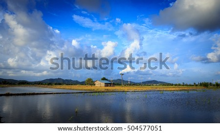 view of barn on the middle of paddy field. soft focus.cloudy sky