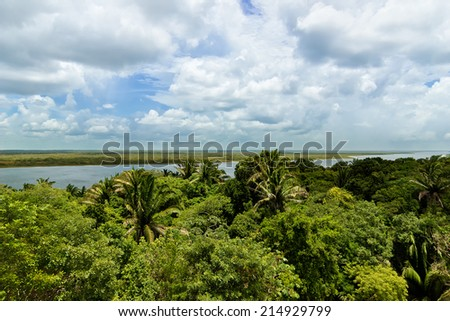 View of Belize jungle and the New River seen in the distance. - stock photo