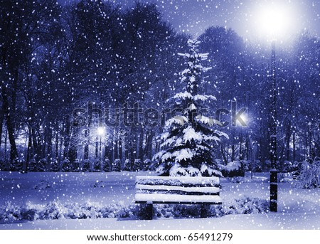 View of bench against christmas tree and shining lantern through snowing. Blue tone. Night shot. - stock photo