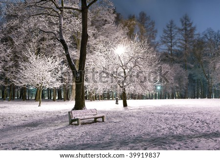 View of bench, shining lantern and trees covered with snow. Night shot.