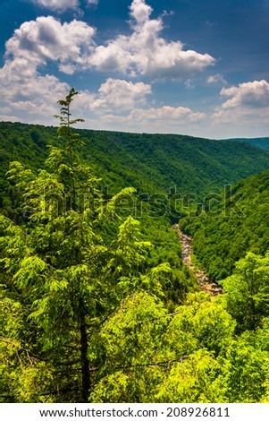 View of Blackwater Canyon from Pendleton Point, at Blackwater Falls State Park, West Virginia.