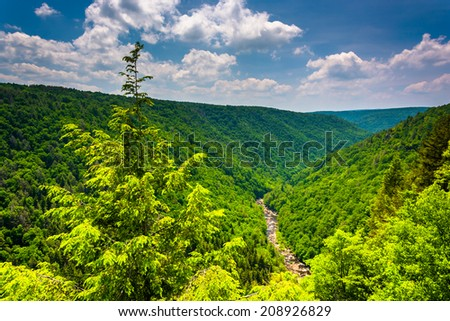 View of Blackwater Canyon from Pendleton Point, at Blackwater Falls State Park, West Virginia. - stock photo