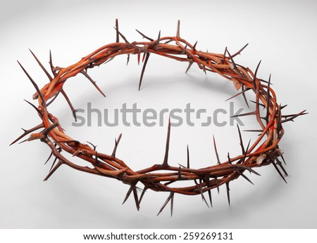view of branches of thorns woven into a crown depicting the crucifixion on an isolated background - stock photo