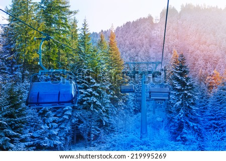 View of cabins in fir forest, Bansko, Bulgaria - stock photo