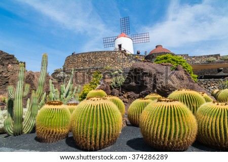 View of cactus garden in Guatiza village, Lanzarote, Canary Islands, Spain - stock photo