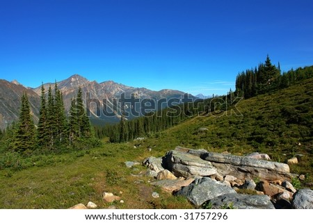 View of canadian rocky mountains and meadows from the hiking trail beside mountain edith cavell, jasper national park, alberta - stock photo
