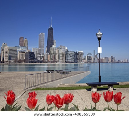 View of Chicago from the pier with red tulips on front - stock photo