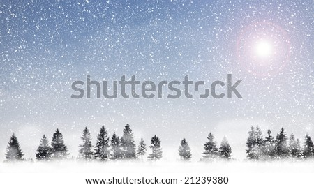 View of christmas trees through snow. Blue sky, snow, snowflakes, trees, fog and sun.