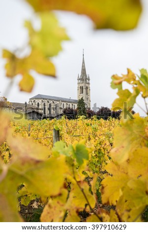 View of church through the grapevines, Pomerol, France - stock photo