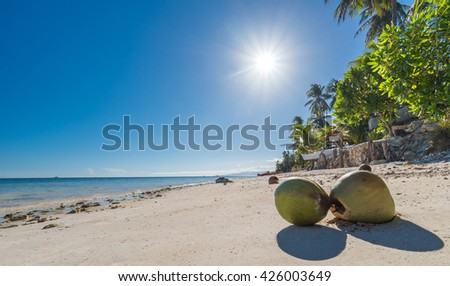 View of Coconuts at Anda beach Bohol island with coconut palms tree leafs, blue sky and turquoise sea water, Travel Vacation - stock photo
