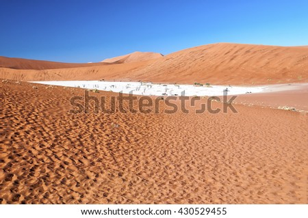 View of Deadvlei in early morning. Deadvlei is a white clay pan located near the more famous salt pan of Sossusvlei, inside the Namib-Naukluft Park in Namibia. - stock photo