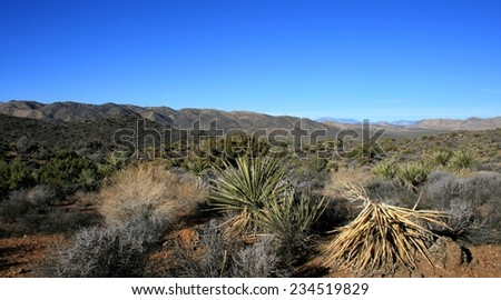 View of desert and mountains from the Lost Horse Trail, Joshua Tree National Park - stock photo