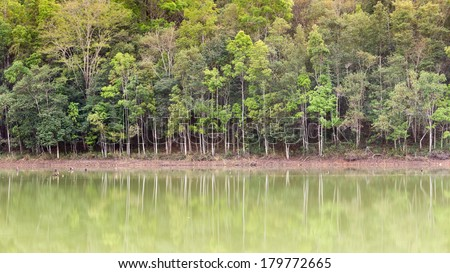 view of emerald lake with forest reflected