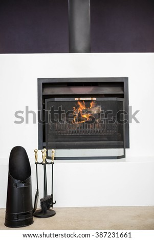 View of fire place in a living room