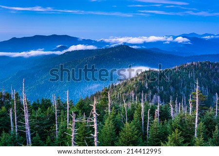 View of fog in the Smokies from Clingman's Dome Observation Tower, in Great Smoky Mountains National Park, Tennessee. - stock photo