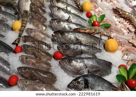 View of fresh fishes on the counter at a market