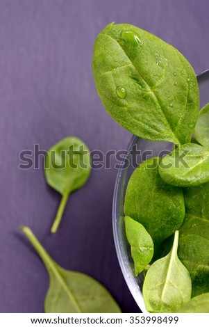 view of fresh spinach leaves  - stock photo