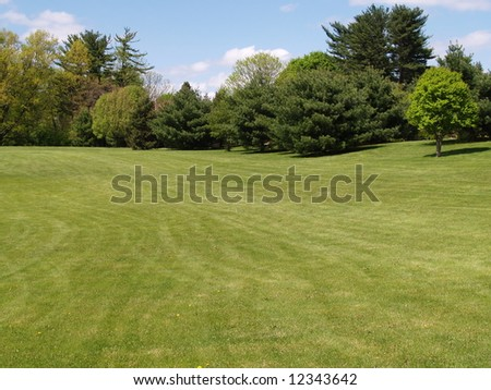 view of grass lawn and trees in a rural setting