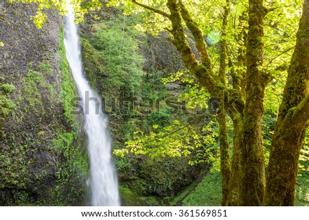 View of Horsetail Falls in the Columbia River Gorge in Oregon - stock photo