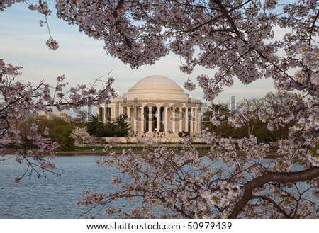 View of Jefferson Memorial framed by cherry blossoms in Washington DC