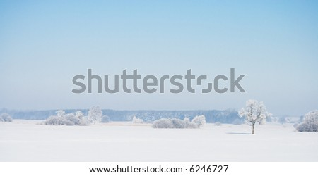 View of landscape covered with snow. Winter scene. - stock photo