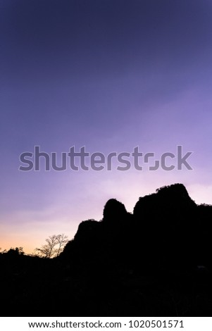 View of limestone forest in South Sulawesi Indonesia
