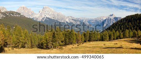 View of meadow, Larch wood, Le Tofane Gruppe and Hohe Gaisl, Dolomiti, Italy