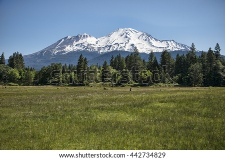 View of Mount Shasta - stock photo