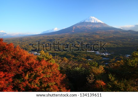 View of Mt. Fuji with Aokigahara forest in autumn, Yamanashi, Japan - stock photo