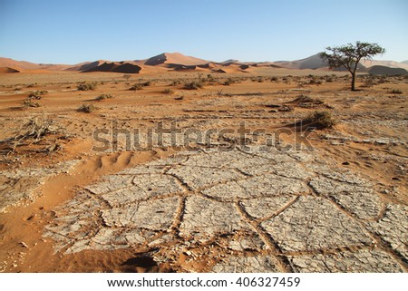 View of Namib desert in Sossusvlei, Namib Naukluft National Park, Namib desert, Namibia.