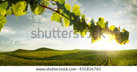 view of nice italian sunny summer countryside landscape - stock photo