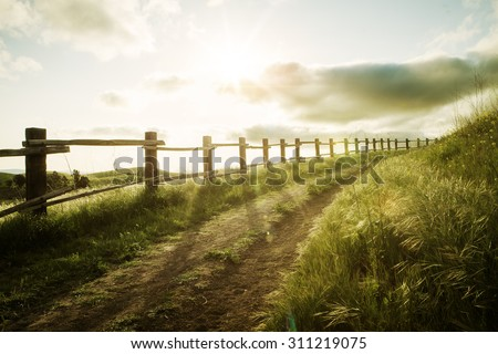 view of nice sunny  summer countryside landscape during sunset  - stock photo