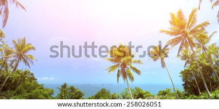 View of nice tropical background with coconut palms. Samui, Thailand. Vintage filter - stock photo