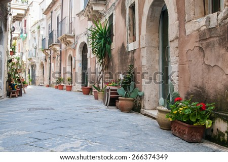 View of one typical street in Ortigia, the old part of Syracuse, and some ornamental flowered vases