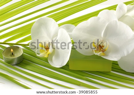 View of Orchid, candle, soap in a spa - stock photo