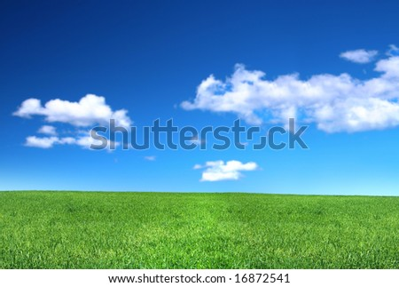 view of peaceful grassland, blue sky above, focus set in foreground - stock photo