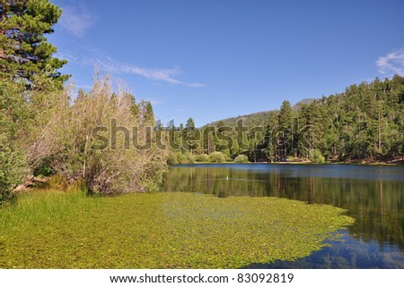 View of peaceful Jenks Lake in the San Gorgonio wilderness area of Southern California. - stock photo