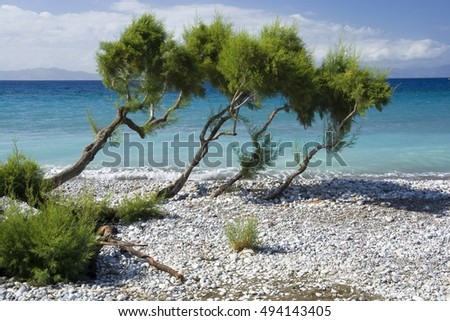 View of pebbly beach on western coast of Rhodes Island, Aegean Sea and Turkey coast in the background, Ialyssos, Greece