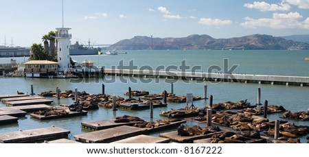 View of pier 39 in San Francisco - stock photo