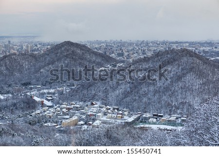 View of Sapporo city in winter