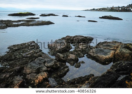View of sea and shore in dusk, victoria, british columbia, canada