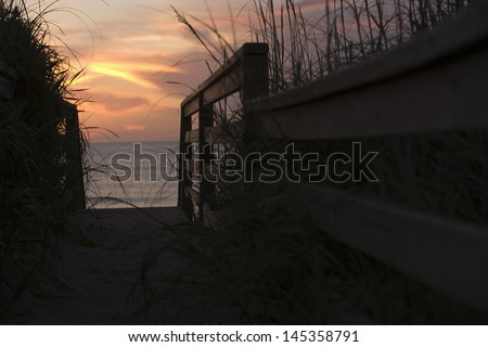 View of sea through pathway leading to beach