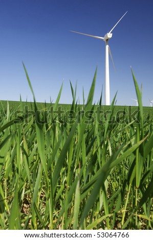 view of some windmills in the grass - stock photo