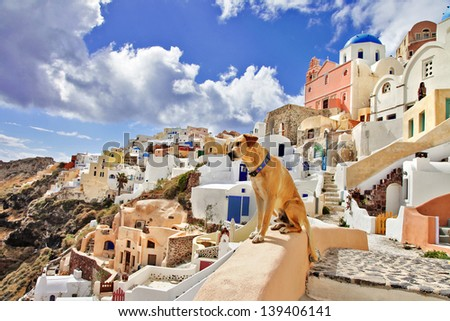 view of stunning Santorini.breathtaken.. and not only for people - stock photo