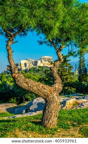 View of the Acropolis hidden behind a tree from the Filopappos hill in Athens, Greece. - stock photo